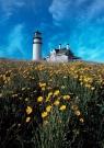 7-Highland-Lighthouse