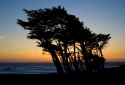24-Sunset-Beach-Trees